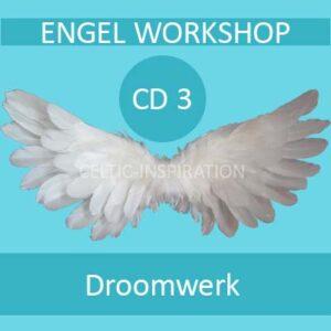 Download Engel Workshop CD3 Droomwerk