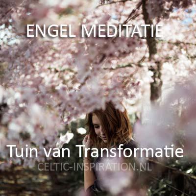 Dowload Engel Meditatie 9 uin van Transformatie
